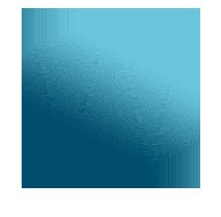 Wendy Colonna Logo